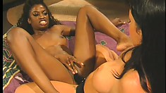 Slender black babe and busty brunette girl have fun with a strap-on dildo on the bed