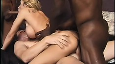 Horny, busty blonde in a gangbang of black cock nailing everything and a nasty DP