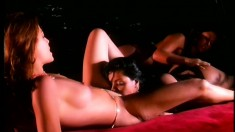 A trio of horny lesbian chicks play around with their big dildos